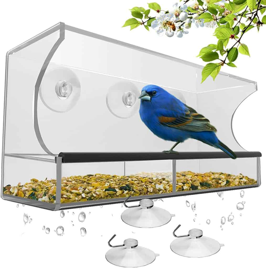 best bird feeder 2021