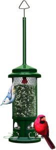 best bird feeder squirrel buster